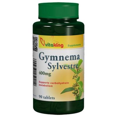 Vitaking Gymnema Sylvestre 90 db